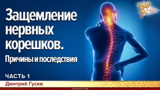 Защемление нервных корешков. Причины и последствия. Дмитрий Гусев. Часть 1