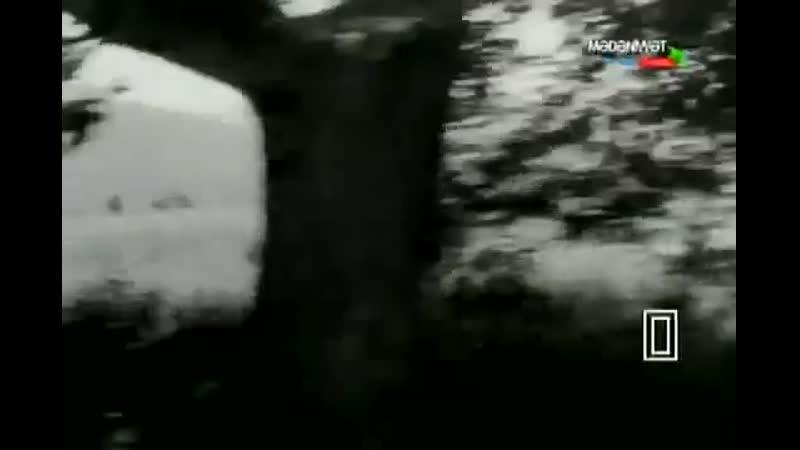Yenilməz batalyon film 1965kino musiqisi A Qəniyev Teymurun mahnısı bəs C Cahangirov 360P