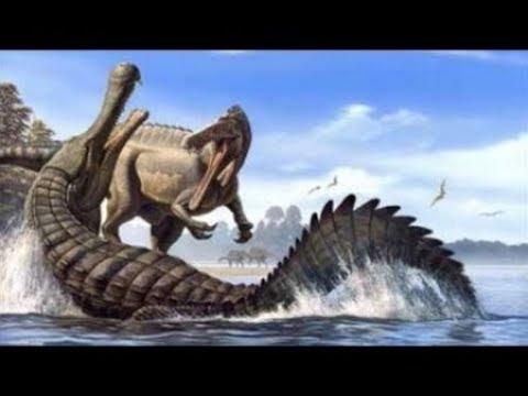Битва Динозавров Бой динозавров Сражение динозавров