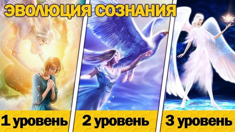 3 уровня РАзвития Сознания Вознесение Нового Времени без духовных практик Квантовый переход 2020
