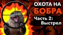 Охота на Бобра с Арбалетом. Mainhunter Doom.