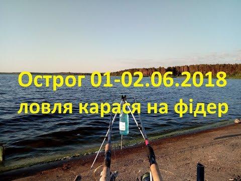 Рибалка на фідер. Нетішинське водосховище. м.Острог 01-02.06.2018