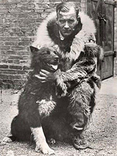 Собака-герой Балто В начале 1925 года дифтерия, страшная болезнь, поражающая детей, разгорелась в поселении Ном. Необходима была вакцина, притом всем прилегавшим больницам. Связавшись по