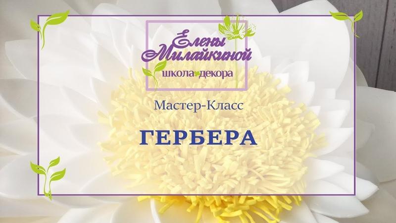 Мастер класс Гербера из изолона. Большие цветы из изолона/Free master class. Large flower of isolon