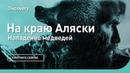 Нападение медведей На краю Аляски Discovery