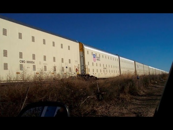 Поезда FEMA пришли в движение К чему бы