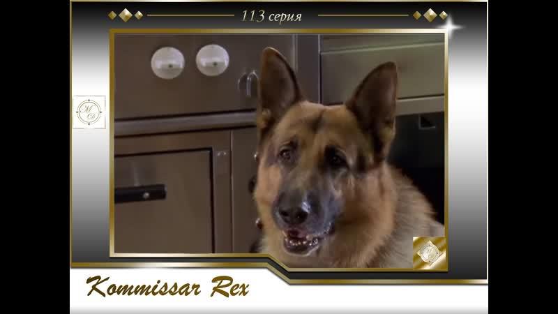 Komissar Rex 9x12 Ein Toter und ein Baby Комиссар Рекс 113 серия Маленькое счастье