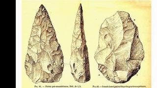 История древнего мира. Видеоучебник. 2. Нижний палеолит