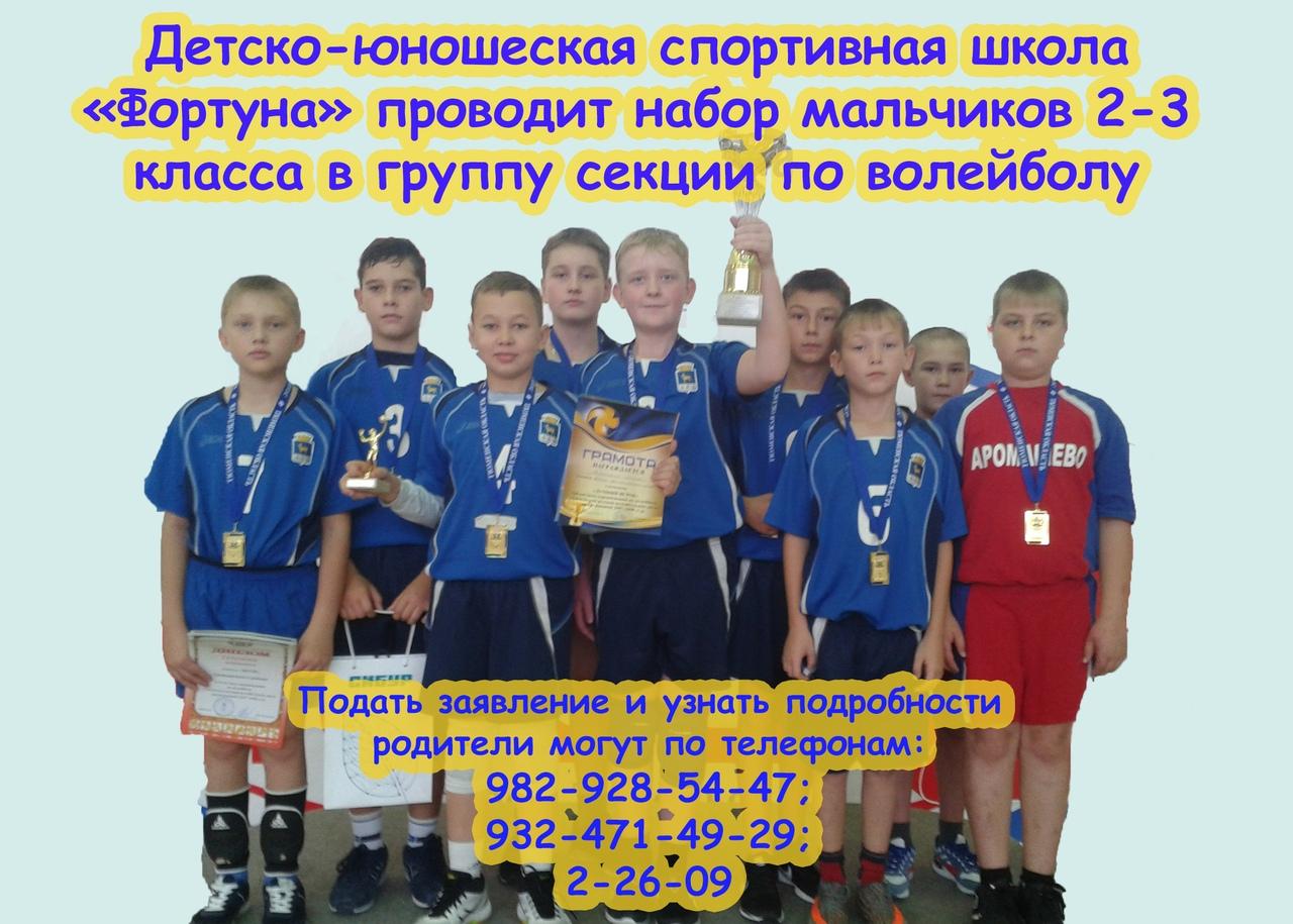 Набор мальчиков 2-3 класса в группу секции по волейболу