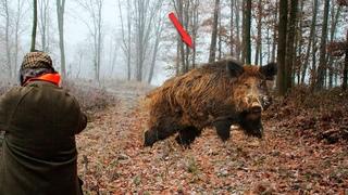 Огромный СЕКАЧ хотел порвать меня на части, но вдруг из леса выскочил ОН!