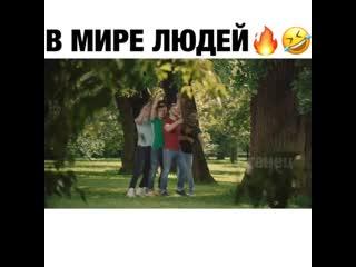 Николай Дроздов троллит любителей селфи.