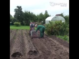 Для выкапывания картохи -