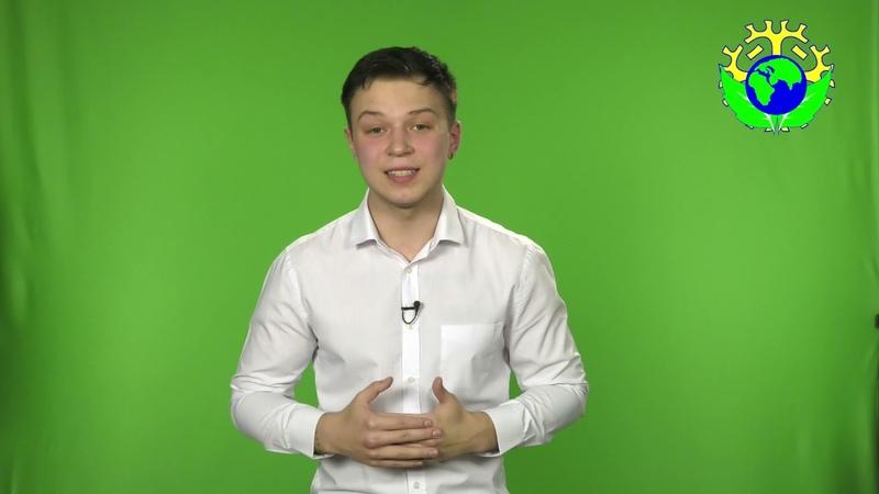 Презентация проекта PROspect Морозов Кирилл