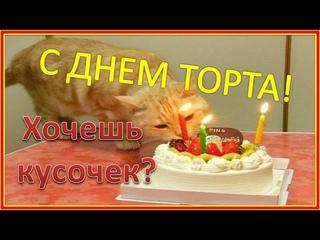 20 июля Международный день торта. С Днем тортика! Хочешь кусочек? Сладкоежкам