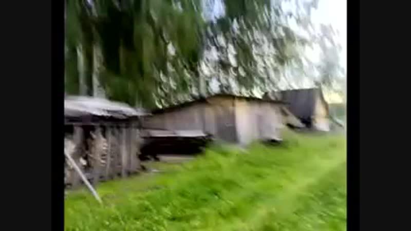 В Кочкурге