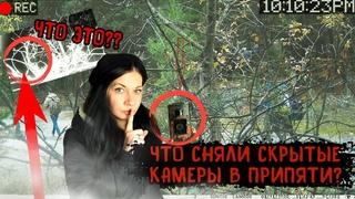 Что сняли скрытые камеры в Припяти и кто попался на фотоловушку - полная версия видео