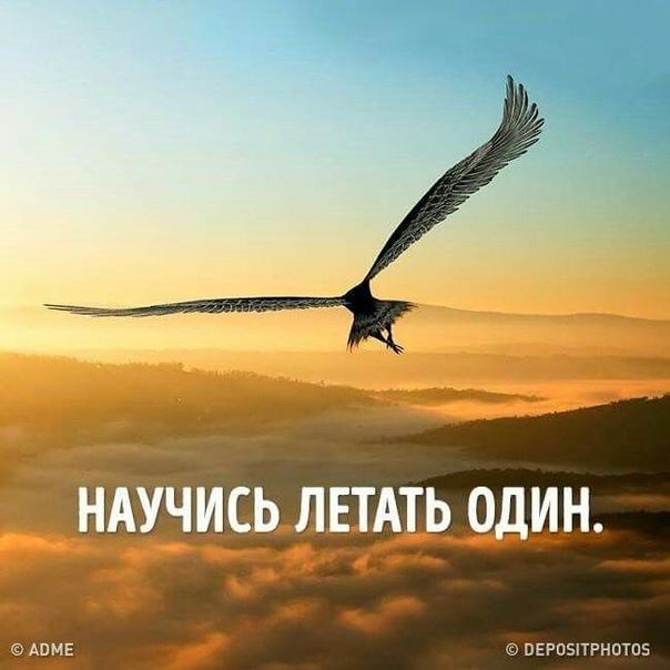 Картинки учись летать