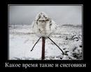 Личный фотоальбом Андрея Широкова