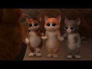 три смешных котенка