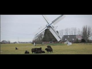 Milky chance stolen dance (new video)