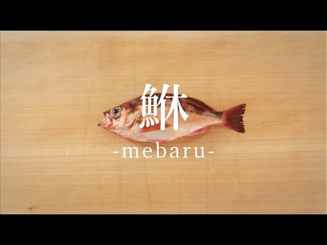 鮴(めばる)のさばき方 - How to filet Rockfish -|日本さばけるプロジェクト