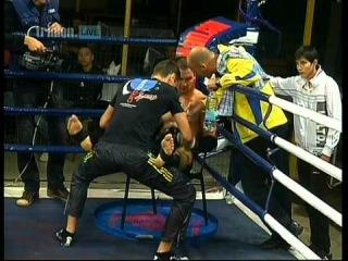 -Профессиональная бойцовская лига Triolan ()