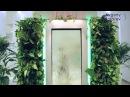 Уникальное вертикальное озеленение компании Lafasad