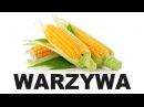 Польська для початківців Oвочі 2 Warzywa
