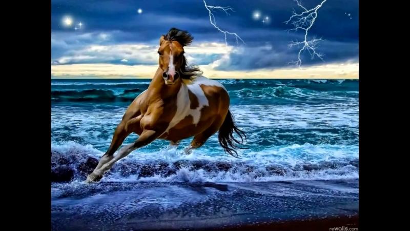 Скачать Живые Обои Лошади