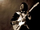 Albert Collins Cold, Cold Feeling