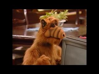 Альф l Alf - 1 Сезон l 24 Серия [HD 720]