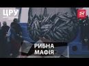 ЦРУ - Як працює рибна мафія України ЕКОЦИД Україна риба ріка рибина річка рибак браконьєр fish мафія