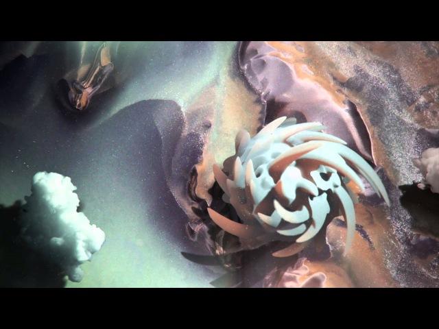 MESTIS - Pura Vida (feat. Mario and Erick of CHON)