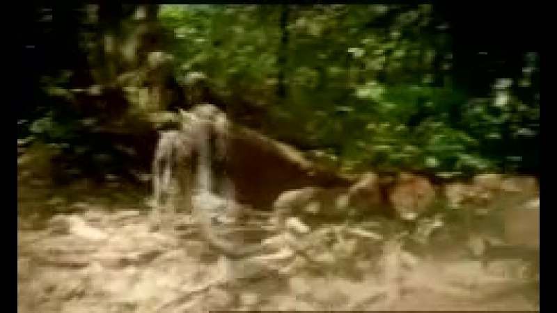BBC Прогулки с чудовищами Walking with Beasts 2001 Трейлер сезон 1