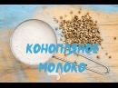 Конопляное Молоко Сыроедное рецепт Tonya Ogino