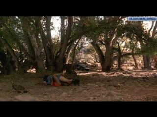Секс на природе с Дженнифер Лопез / Sex in nature with Jennifer Lopez
