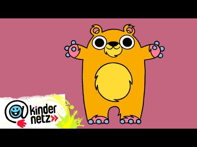Bär   Ich kenne ein Tier   SWR Kindernetz
