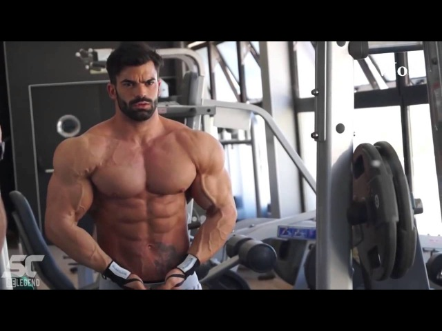 Ulisses Jr VS Sergi Constance VS Sadik Hadzovic Choose The Best Aesthetic Physique