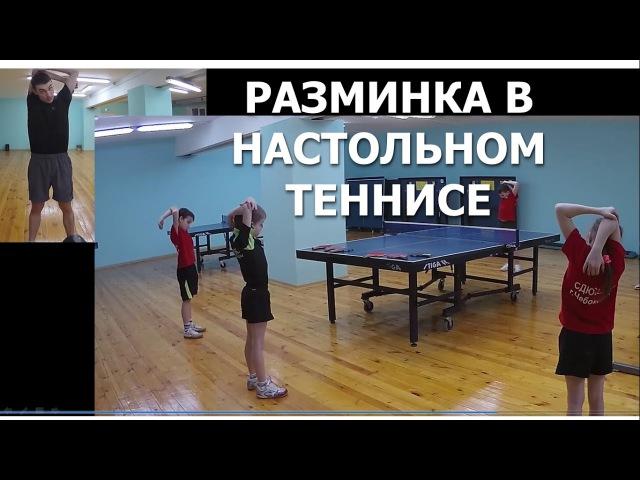 Разминка в НАСТОЛЬНОМ ТЕННИСЕ Техника проведения разминки настольный теннис