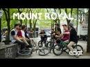 BMX: Éclat - MOUNT ROYAL
