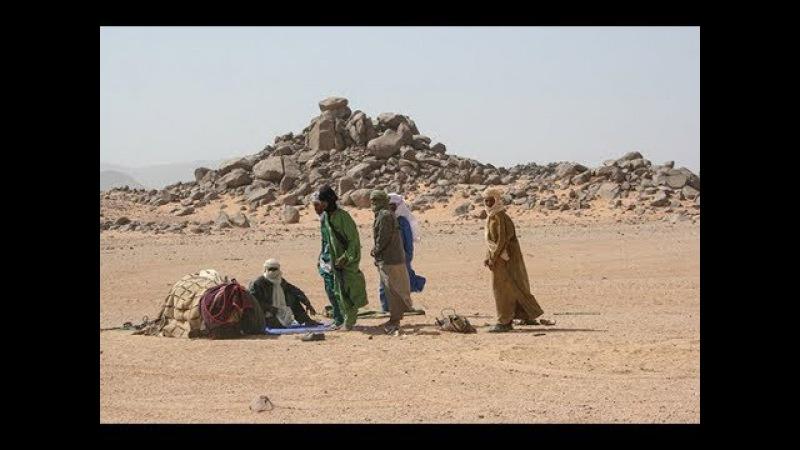 Сахарский кризис королева пустынь нуждается в помощи России