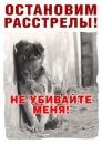 Фотоальбом Марии Кулешовой
