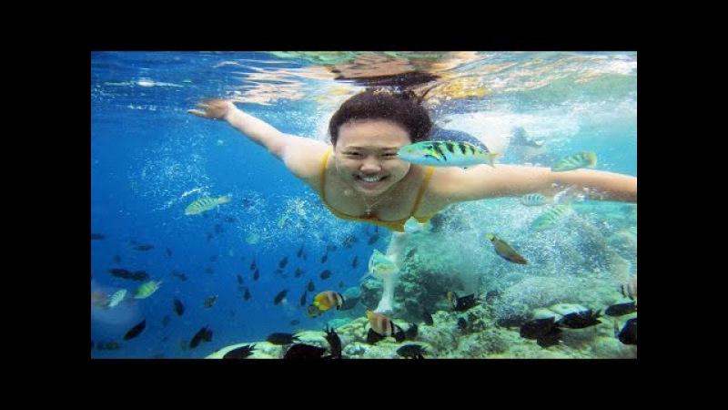 Pesona Indonesia - Keindahan Taman Laut Bunaken, Manado - Sulawesi Utara