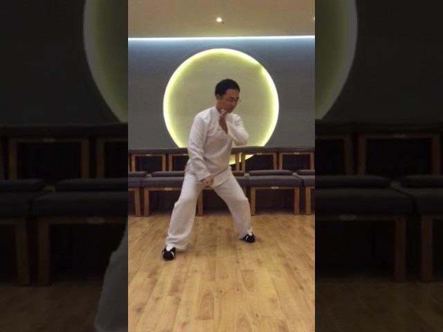 8 shi kao shi в исполнении Мастера Ван Лина