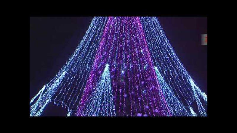 Vilniuje įžiebta Kalėdų eglutė!