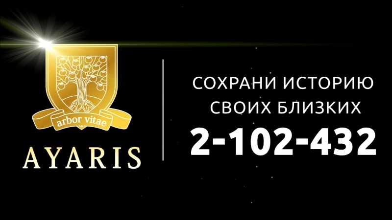 Гарипов Ильназ Аярис