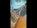 Жана жылдык демалысым. Aport HAWAII да🏊🏊🏊