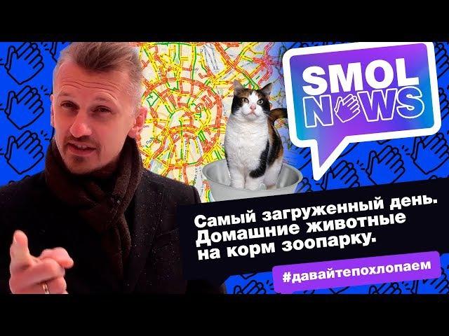 SMOLNEWS 14 Никого кроме Путина Пробки в Москве Питомцы на корм хищникам