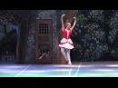 Cipollino ballet 2 act