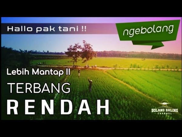 TERBANG RENDAH LEBIH MANTAP Bayangtoys X21